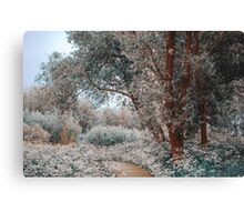 Ethereal Feel. Nature in the Alien Skin Canvas Print