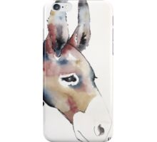 Donkey iPhone Case/Skin