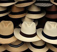Panama Hats by rhamm