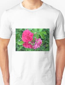 Pink roses and green leaves, natural background. Unisex T-Shirt