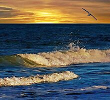 Life's a wave ... catch it ! by Barbny