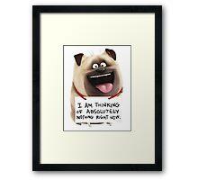 The secret life of pets - Mel  Framed Print