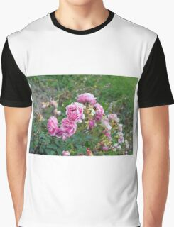 Pink roses in the garden, natural background. Graphic T-Shirt