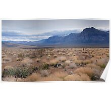 Blue Mountain Landscape in the Desert Southwest Poster