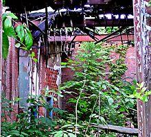 Enclosed Garden by Paul Lubaczewski