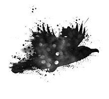 Starlit Raven Photographic Print