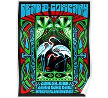 DEAD & COMPANY SUMMER TOUR 2016 JIFFY LUBE LIVE,BRISTOW VA Poster