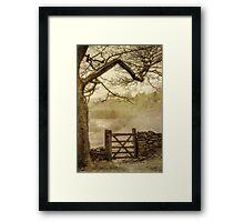 Misty delight Framed Print