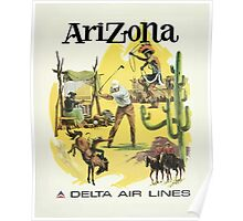 Arizona Delta Air Lines Vintage Travel Poster Poster