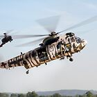 Sea King and Apache Helicopters by © Steve H Clark