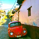 Red Beetle, San Cristobal, Mexico by JCMM