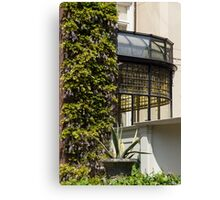 Gardening Delights - Wisteria, Aloe Vera and a Stained Glass Canopy - Right Canvas Print
