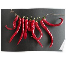 Dried chillies Poster