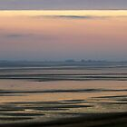 Sunrise and Low Tide by ienemien