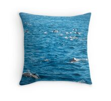 Dolphins, Ocean photography, Nature, Seascape,  Throw Pillow
