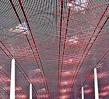 A Capital Ceiling © by Ethna Gillespie