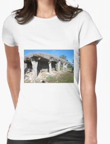 Thatched Woolshed @ Clayton Farm Museum Womens Fitted T-Shirt