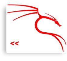 Backtrack Linux Hacker Tees Canvas Print