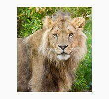 530 lion king Unisex T-Shirt