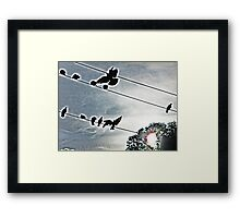 black birds on a wire Framed Print