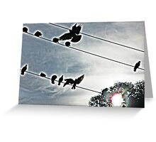 black birds on a wire Greeting Card