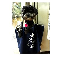 KEEP CALM AND CARRY ON by Kathleen Conklin