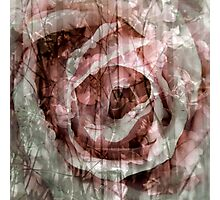 Rose Collage for Tote or Throw Pillow Photographic Print