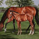 In the Shade by Stephanie Greaves