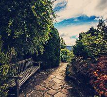 Secret Garden by yolanda