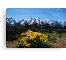 Wildflowers and the Grand Tetons Canvas Print