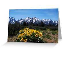Wildflowers and the Grand Tetons Greeting Card