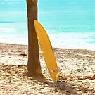 Surfboard by Stephanie Sherman