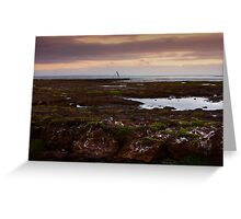 Ricketts point pools Greeting Card