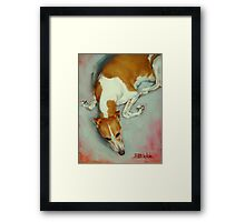 Chloe The Whippet Framed Print