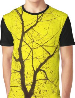Central Yellow Tree Graphic T-Shirt
