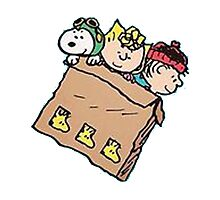snoopy and friends in the box Photographic Print