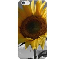 PAINT MY WORLD iPhone Case/Skin