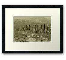 Barbed Wire Fence in a Field Framed Print