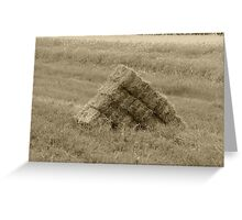 Rectangle Hay Bales Greeting Card