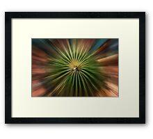 Cactus explosion Framed Print