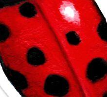 Big Ladybug, Ladybird, Bright Red Insect, Wildlife Art Sticker