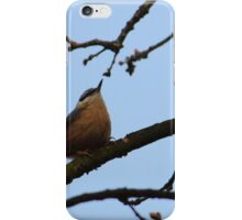 Nuthatch With Head High iPhone Case/Skin