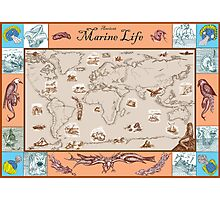Ancient Marine Life map Photographic Print
