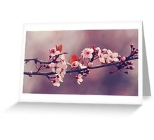 Soft side of Spring III Greeting Card