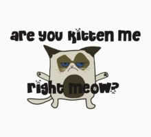 Are You Kitten Me?  Baby Tee