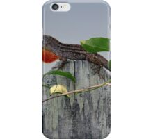 Anole on Fence iPhone Case/Skin