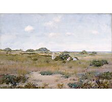 William Merritt Chase - Gathering Wild Flowers 1895. Field landscape: field landscape, nature, Wild, garden, flowers, Gathering , sun, rustic, Wild Flowers, sky, summer Photographic Print