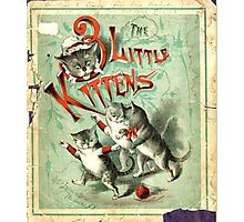 Ancient Three Little Kittens ART Photographic Print