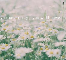 If you never try, you will never know by Indea Vanmerllin