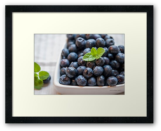 Blueberry Love by Jessica Manelis